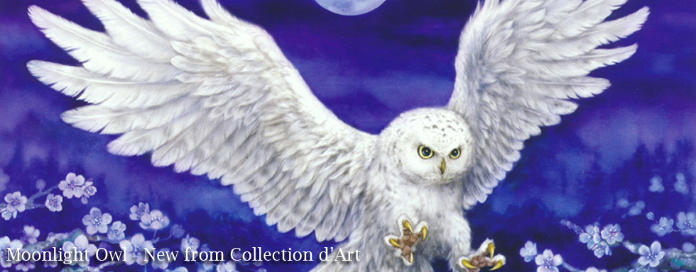 Snowy Owl from Collection d'Art
