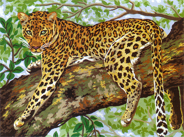 Leopard  - Collection d'Art Needlepoint Canvas