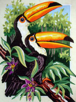Toucans  - Collection d'Art Needlepoint Canvas