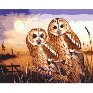Two Owls  - Collection d'Art Needlepoint Canvas