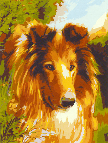 Collie  - Collection d'Art Needlepoint Canvas