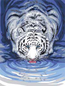 White Tiger Drinking  - Collection d'Art Needlepoint Canvas