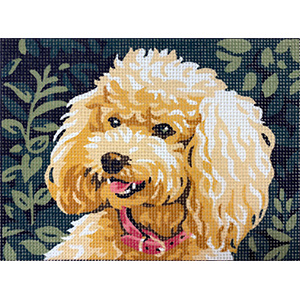 Royal Paris Poodle Needlepoint Canvas or Kit