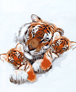 Tiger and Cubs Cameo  - Collection d'Art Needlepoint Canvas