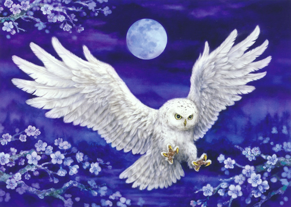 Moonlight Owl - Collection d'Art Needlepoint Canvas