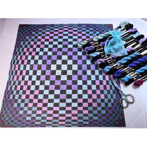 Checker Illusions Hand Painted Canvas by Susan Roberts with Perle Cotton Kit