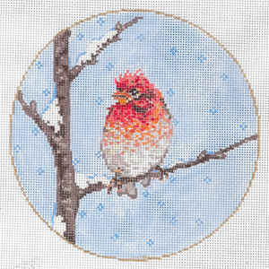 Lil' Chipper - Stitch Painted Needlepoint Canvas from Sandra Gilmore