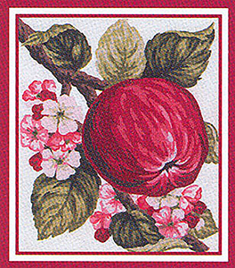 Apple and Blossoms - Collection d'Art Needlepoint Canvas