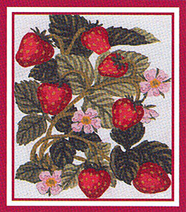 Strawberries  - Collection d'Art Needlepoint Canvas