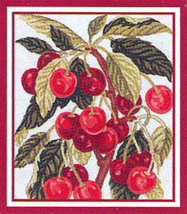 Cherries  - Collection d'Art Needlepoint Canvas