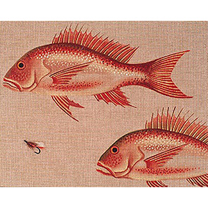 Leigh Designs - Hand-painted Needlepoint Canvases - Red Snapper & Fly Canvas