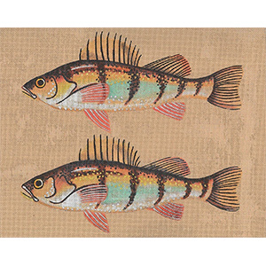 Leigh Designs - Hand-painted Needlepoint Canvases - Yellow Perch Canvas