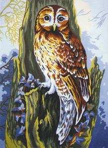 Owl  - Collection d'Art Needlepoint Canvas