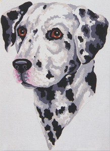Dalmatian - Collection d'Art Needlepoint Canvas