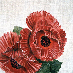 Leigh Designs - Hand-painted Needlepoint Canvases - Classic Florals - Oriental Poppy