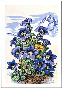 SEG de Paris Needlepoint - Small Needlepoint Canvases - Mountain Flowers in Blue Canvas