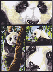 SEG de Paris Needlepoint - Medium Needlepoint Canvases - Panda Panel