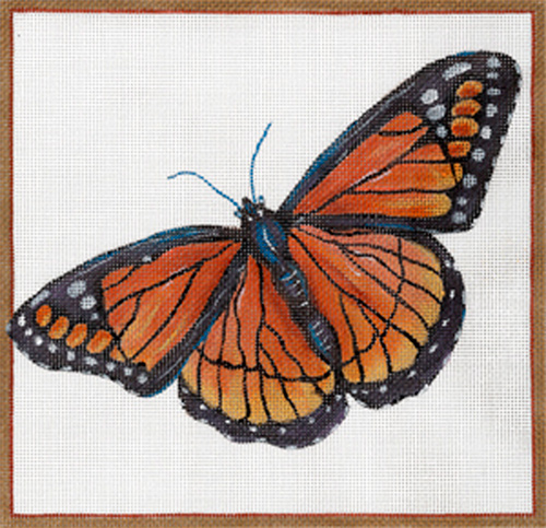 Viceroy Butterfly by Sharon G