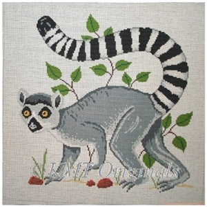 Ringed Tail Lemur
