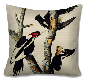 Ivory Billed Woodpeckers by Audubon Needlepoint Cushion Canvas or Kit