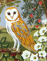 Barn Owl - Anchor British Collection Needlepoint Tapestry Kit